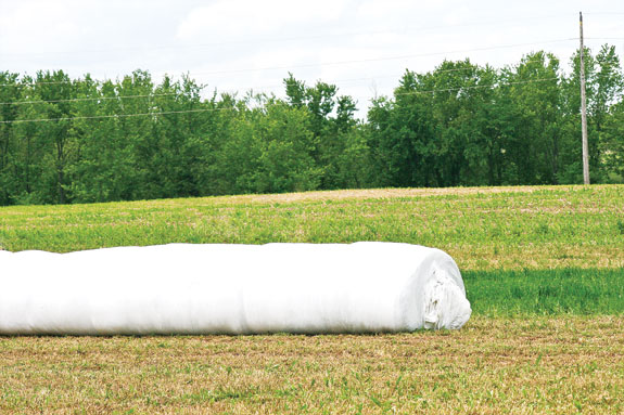 Baled and wraping
