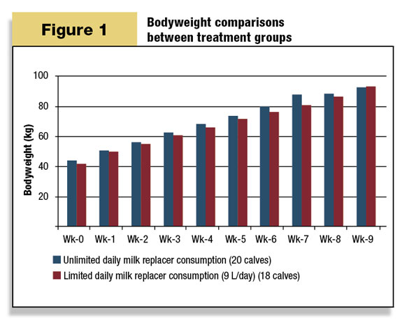 Bodyweight comparisons between treatment groups