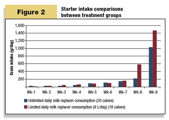 Starter intake comparisons between treatment groups